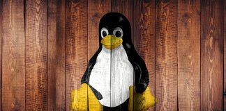 linux systemd bug